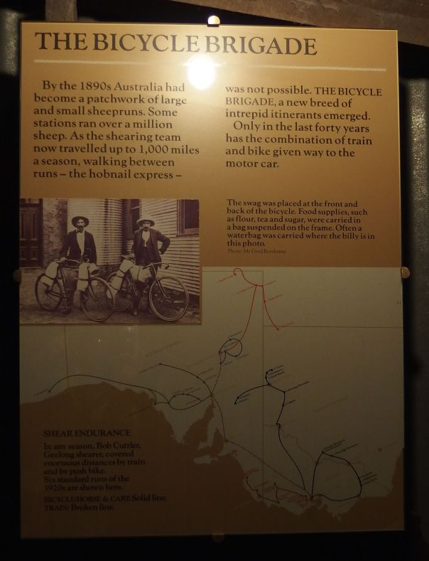 The Bicycle Brigade used trains and bicycles to travel to sheep stations.