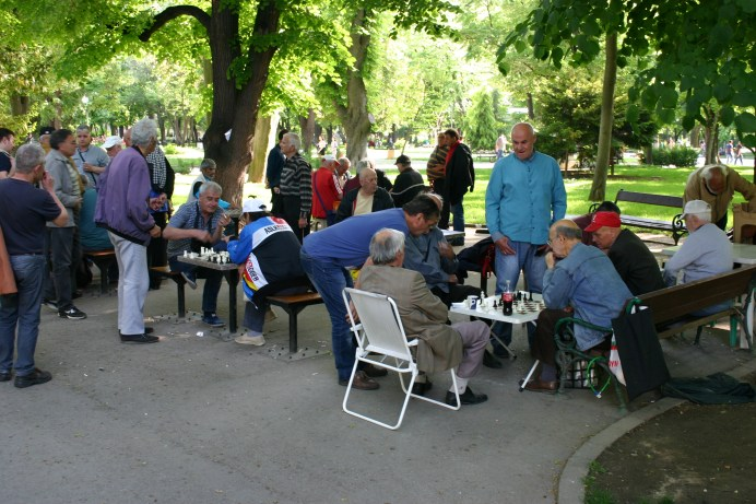 serious Chess in the park