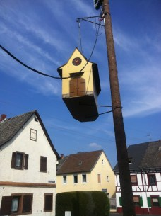 cross species egalitarianism, i bet the birdhouse had heating and running water too :D