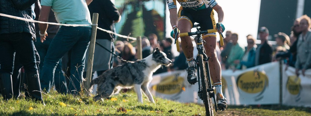Bpost Bank Trofee #2 – Koppenberg Race Report