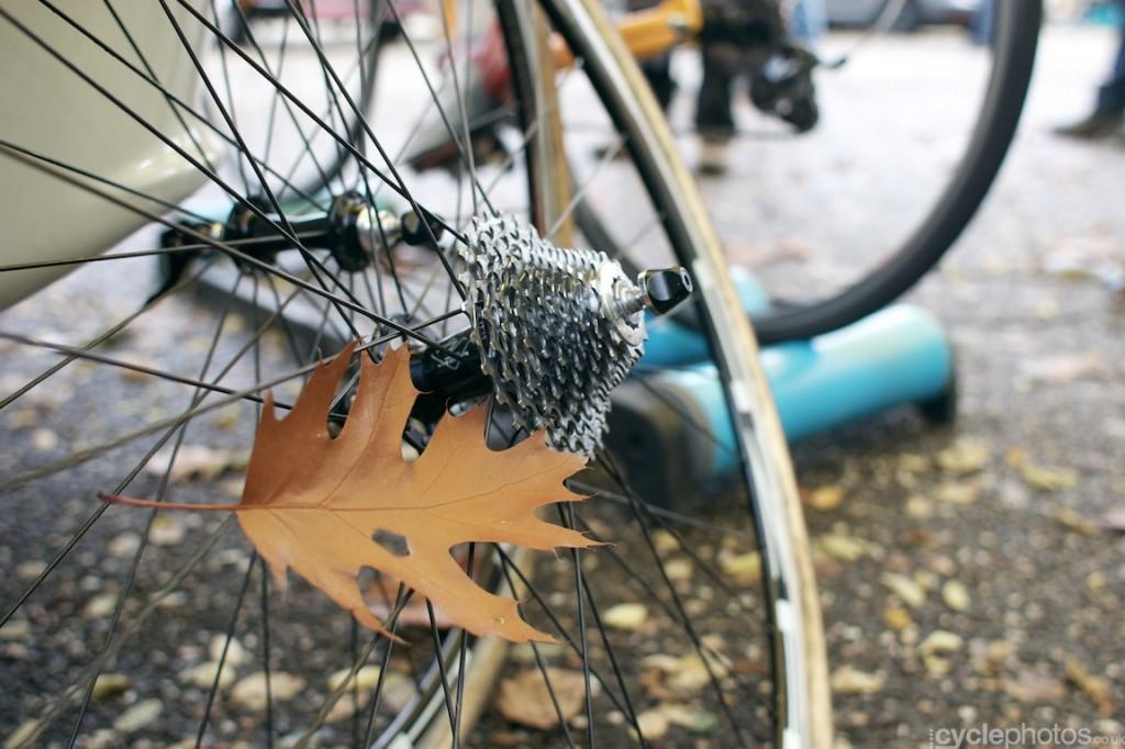 2013-cyclocross-world-cup-valkenburg-184-leaf