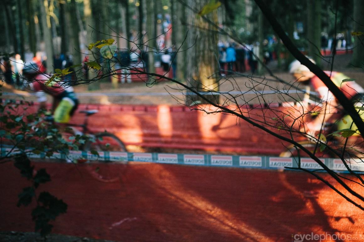 2014-cyclocross-neerpelt-trees-1820