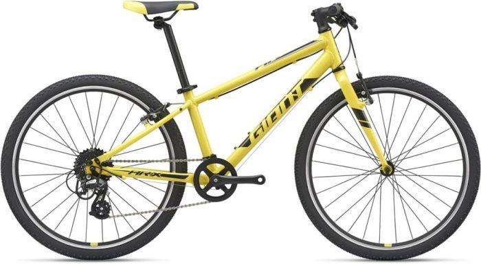 Giant ARX kids bike - new lightweight kids bike