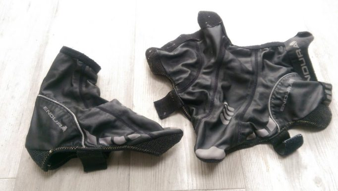 An overshoe and a dead animal...