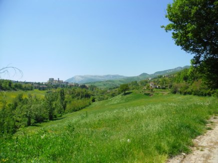 Cycling Tour in Italy, 2nd day, green fields