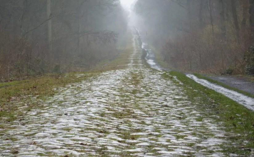 Trouée d'Arenberg (Arenberg Forest)