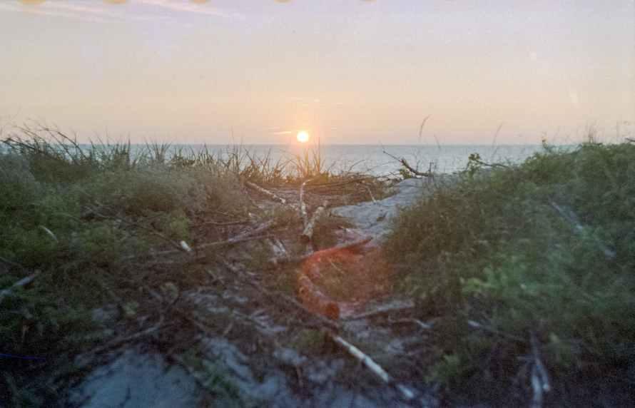 photo of seashore during dawn