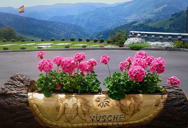 cycling-in-love_foza_penultima-tappa-giro-italia_fiori-rosa_altopiano-di-asiago