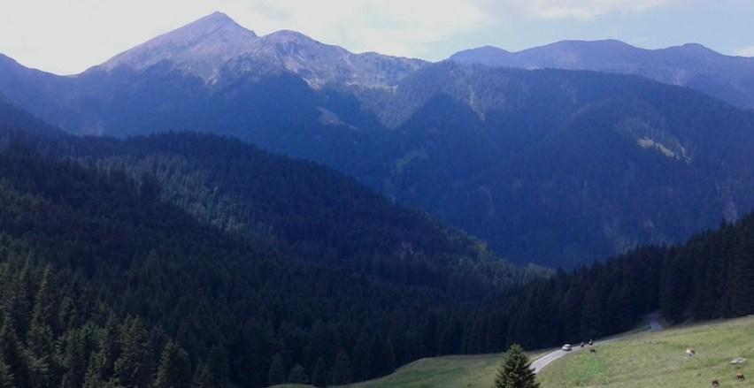 passo-manghen-in-bicicletta-da-molina-di-fiemme_grandi-salite-del-trentino-panorama_passo_manghen