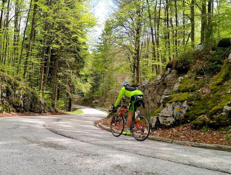 Cansiglio in bicicletta da Caneva (PN): caratteristiche della salita