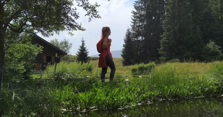 Il giardino botanico di Pian del Cansiglio: come raggiungerlo e cosa vedere