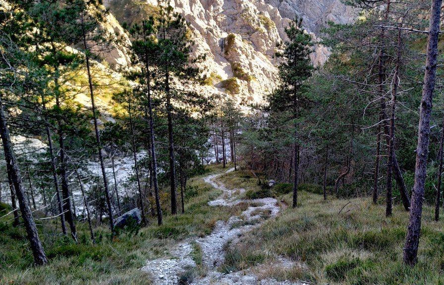 Valle del torrente Subaises (Andreis)