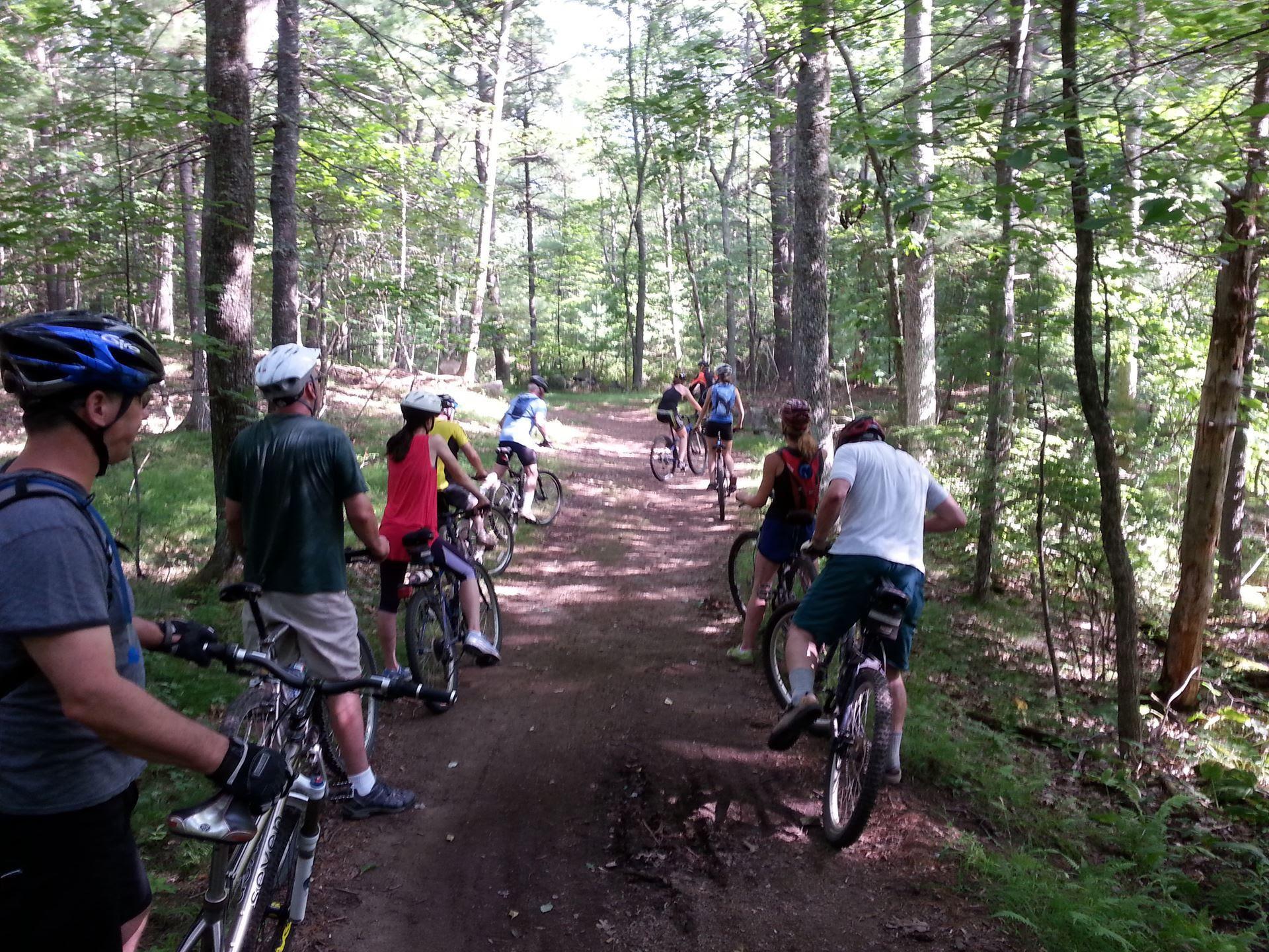 Willowdale Mountain Bike Ride, November 19