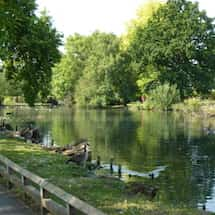 Wandle Trail - Waddon Ponds