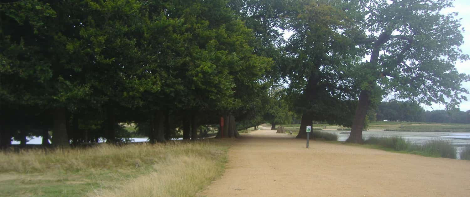 Tamsin Trail, Richmond Park