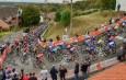 Peloton Mur de Huy - Flèche Wallonne Hommes 2020 - ASO Gautier Demouveaux.jpg