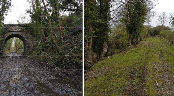 Great Southern Greenway: Limerick – Kerry