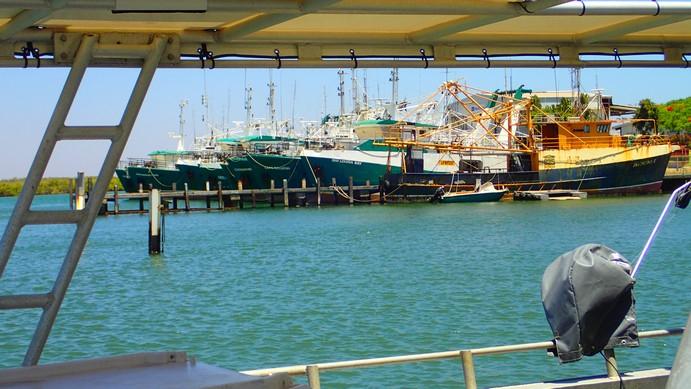Fishing fleet through a charter boat