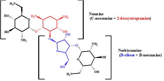 neomycine