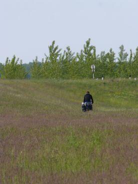 L'eurovélo en Hongrie : Le chemin VTT cross ou l'herbe. On choisit l'herbe