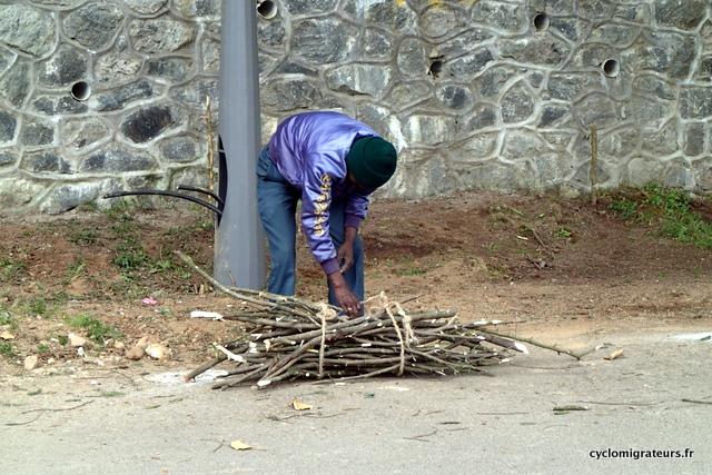Ramasseur de bois à Kodaikanal