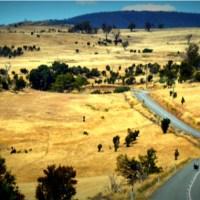 La Tasmanie c'est fini