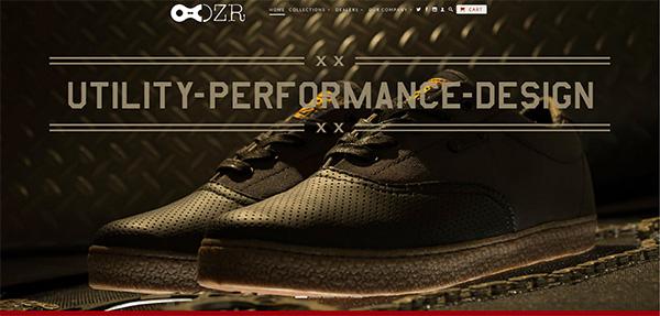 DZR-website