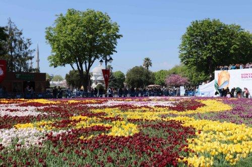 Les tulipes, fleurs des sultans, fêtent le printemps