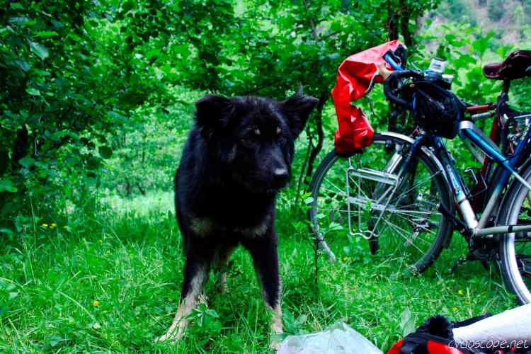 Bicycle Touring Romania pt1: another Europe 19