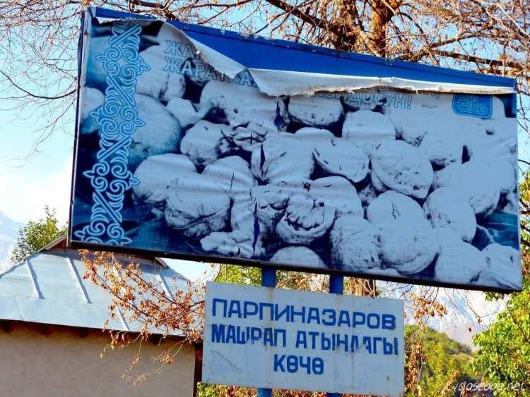 walnut Kyrgyzstan