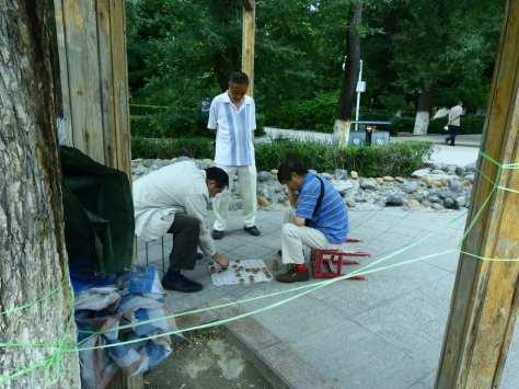 Cose da fare Urumqi