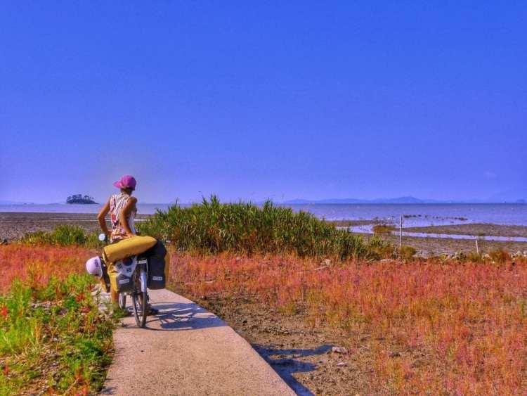 bike travel how many miles per day
