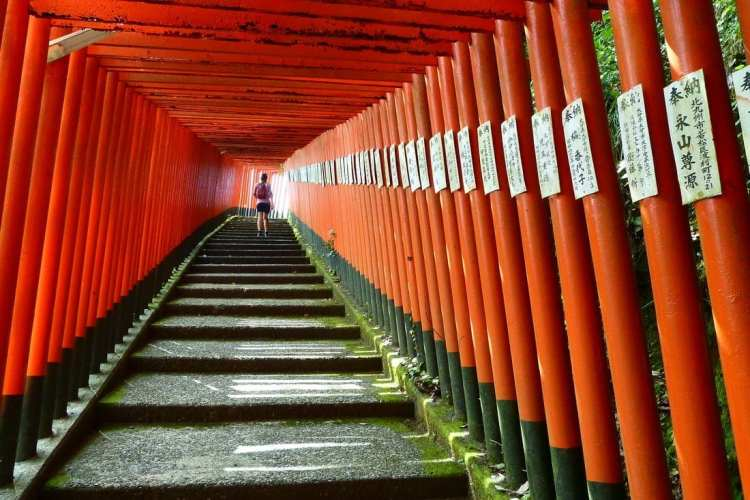 itinerario culturale giappone kyushu