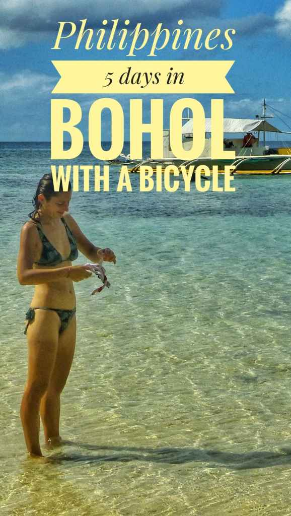 things to Bohol