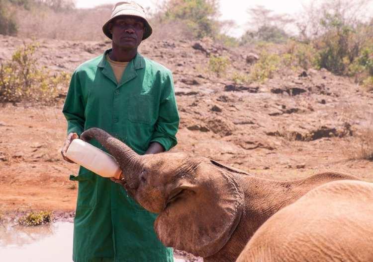 nairobi dangerous travel africa