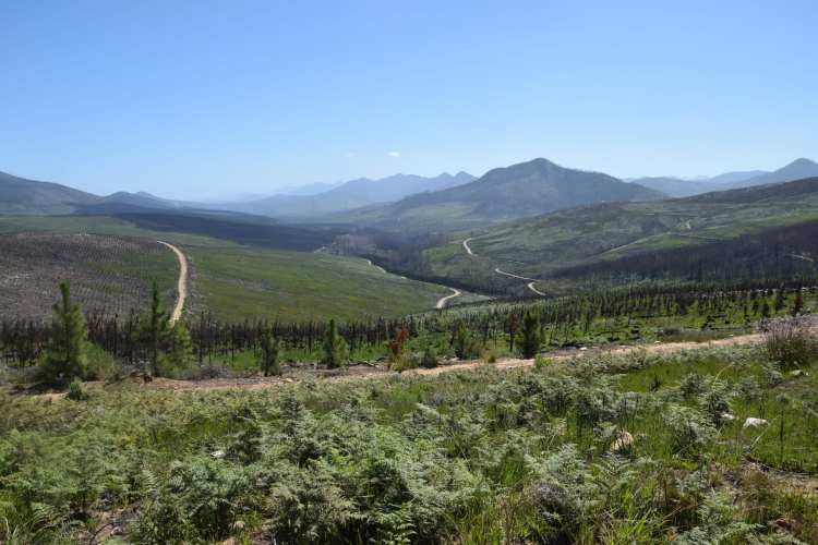 prince alfred pass garden route