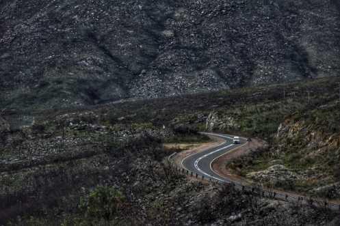 Kareedouw pass