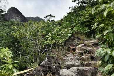 Anse Major hike
