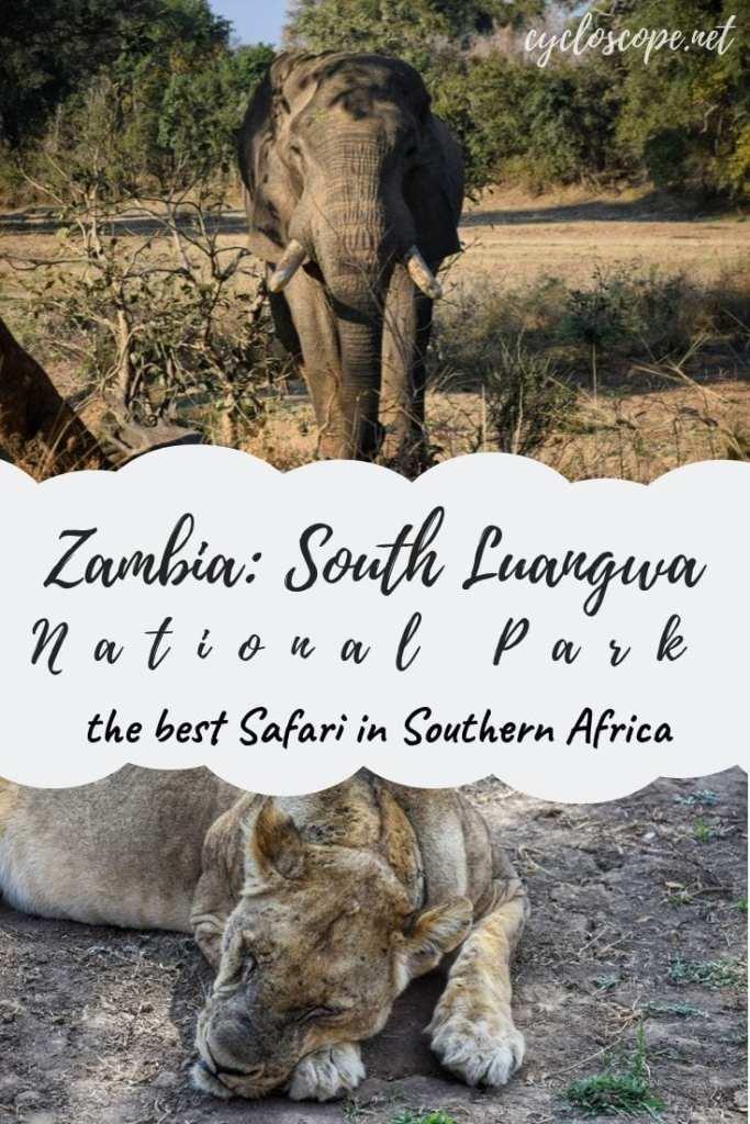 Zambia Luangwa