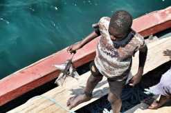 Ilala ferry history