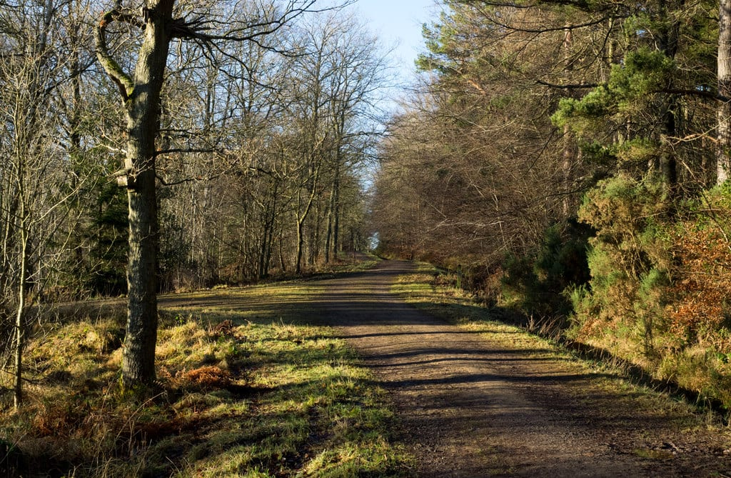 Cycling Holiday in the UK? 11 (or 12) Best Bike Trails for Everyone 11