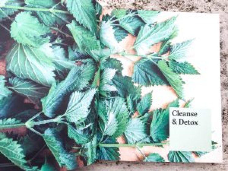 Cleanse & Detox - Cleanse Nurture Restore