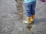Grandson at the Beach