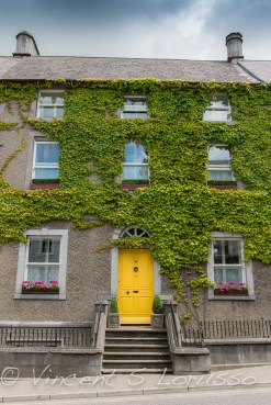 The yellow door, window box flowers, and ivy covered wall just begs to be the subject of a photograph.