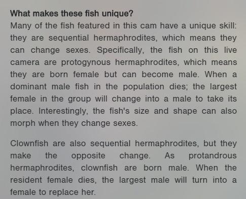 aquarium-facts.jpg
