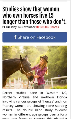 horse-owner-news-live.jpg