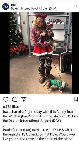 instagram-dog-tsa.jpg