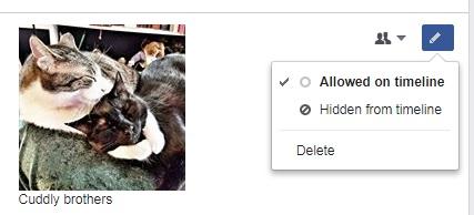 hide-or-delete-activity