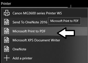 print-to-pdf.jpg