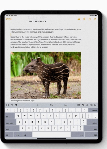 edit-text.jpg